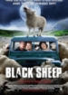 Cover: Black Sheep (2006)
