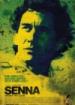 Cover: Senna (2010)